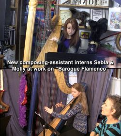 What do Harpist Composer's-Assistants Do?