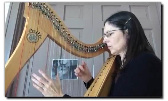 "GOODIN – Karen (USA) ""Tolly's Winter Blues"" (BHS3)"