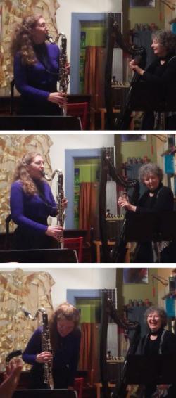 Carol Levin – Final Beginning Project (BHS2016)