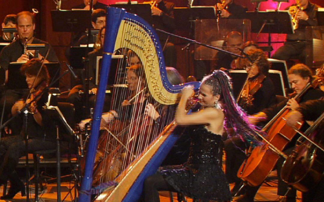 Baroque Flamenco Orchestra Info