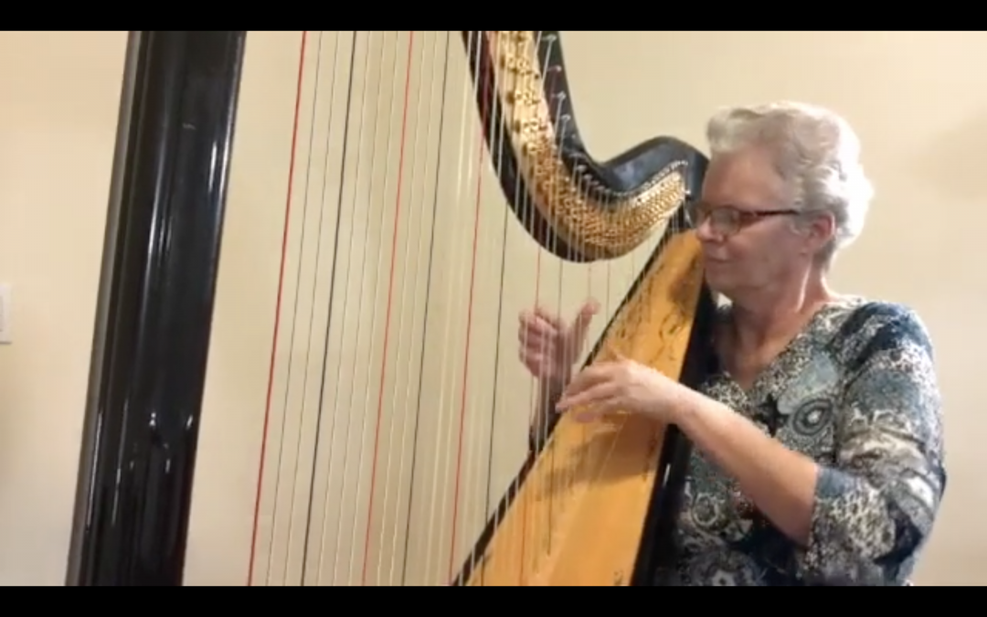 Meet Sally – Helping to Reinvent an Orchestra on Solo Harp